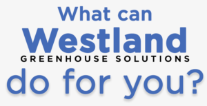 What can Westland Greenhouse Solutions do for you?